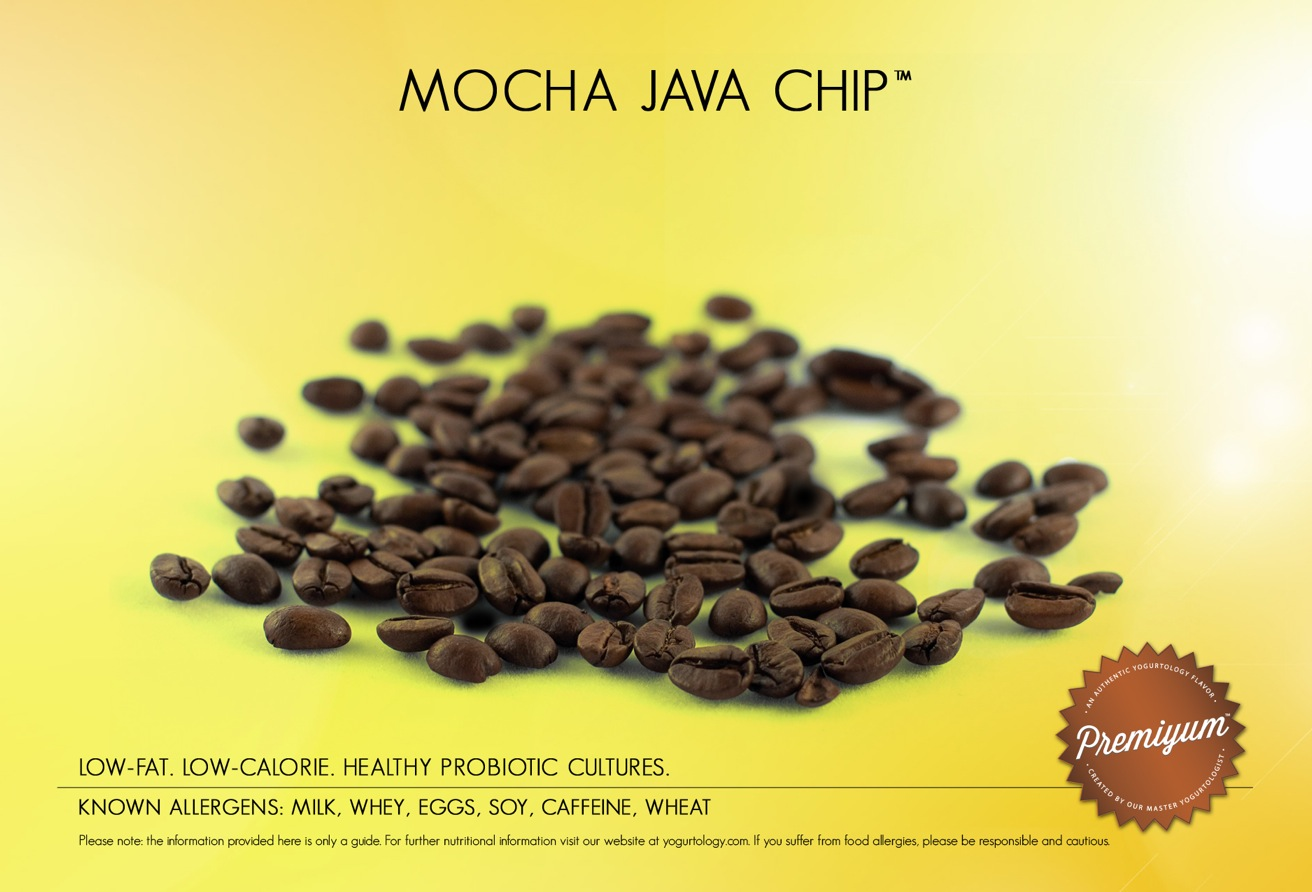 Mocha Java Chip