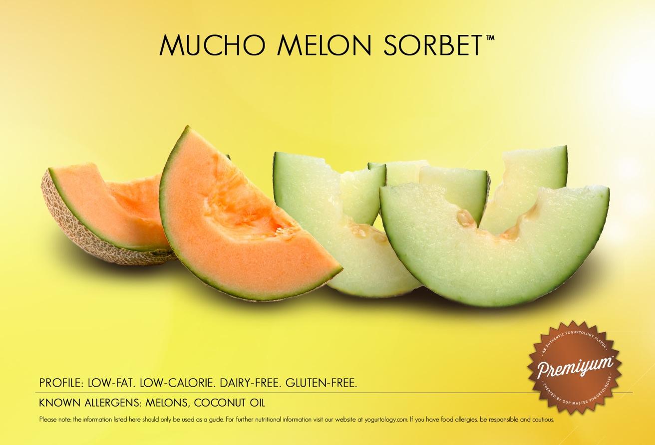 melon sorbet photo melon sorbet recipe key ingredient melon sorbet ...