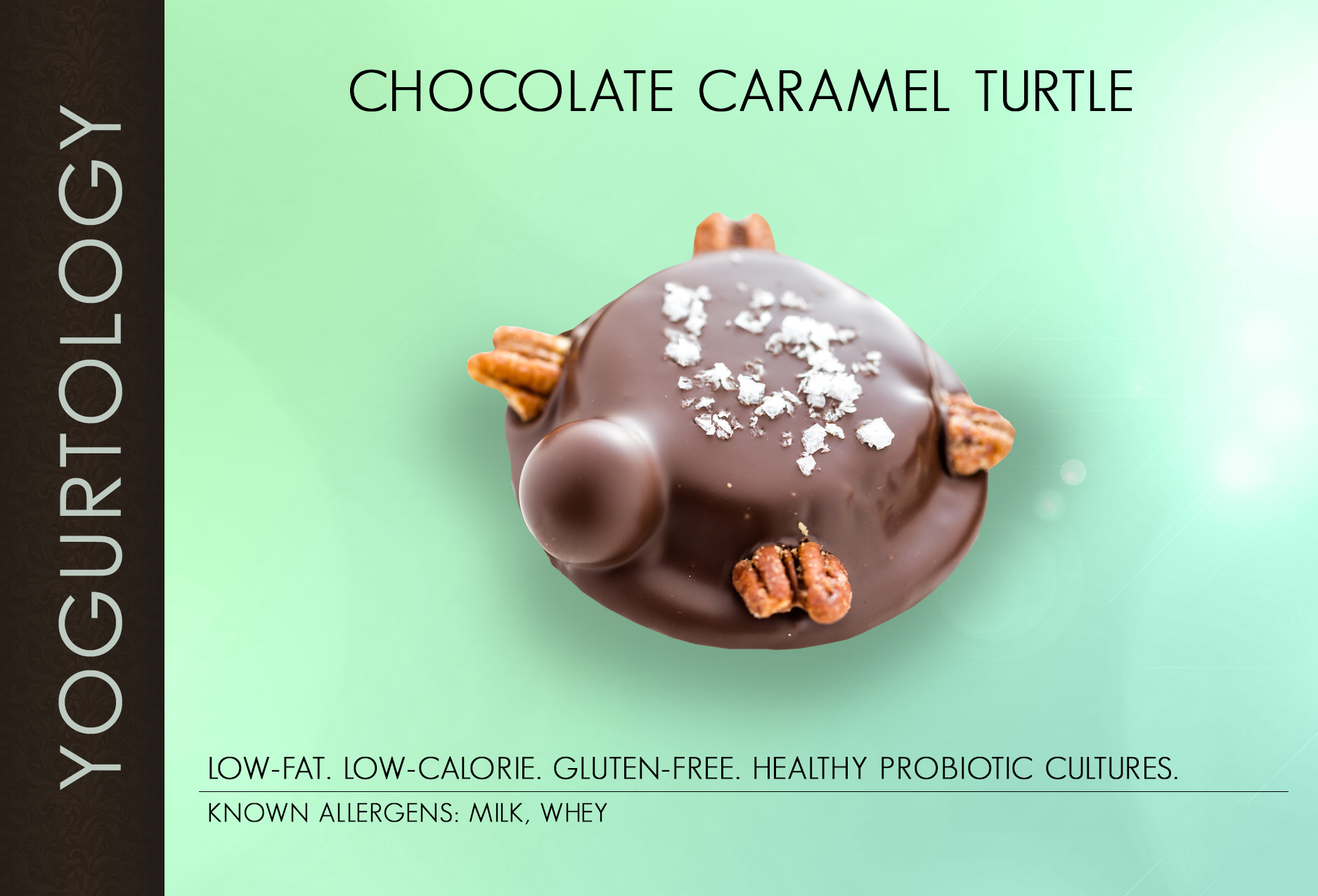 Chocolate Caramel Turtle